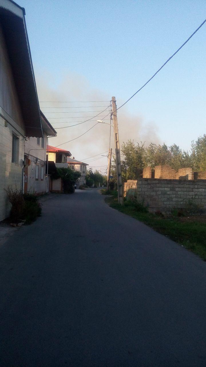آتش زدن های مکرر مزارع و باغهای بیجاربنه بالای لاهیجان در روز جمعه
