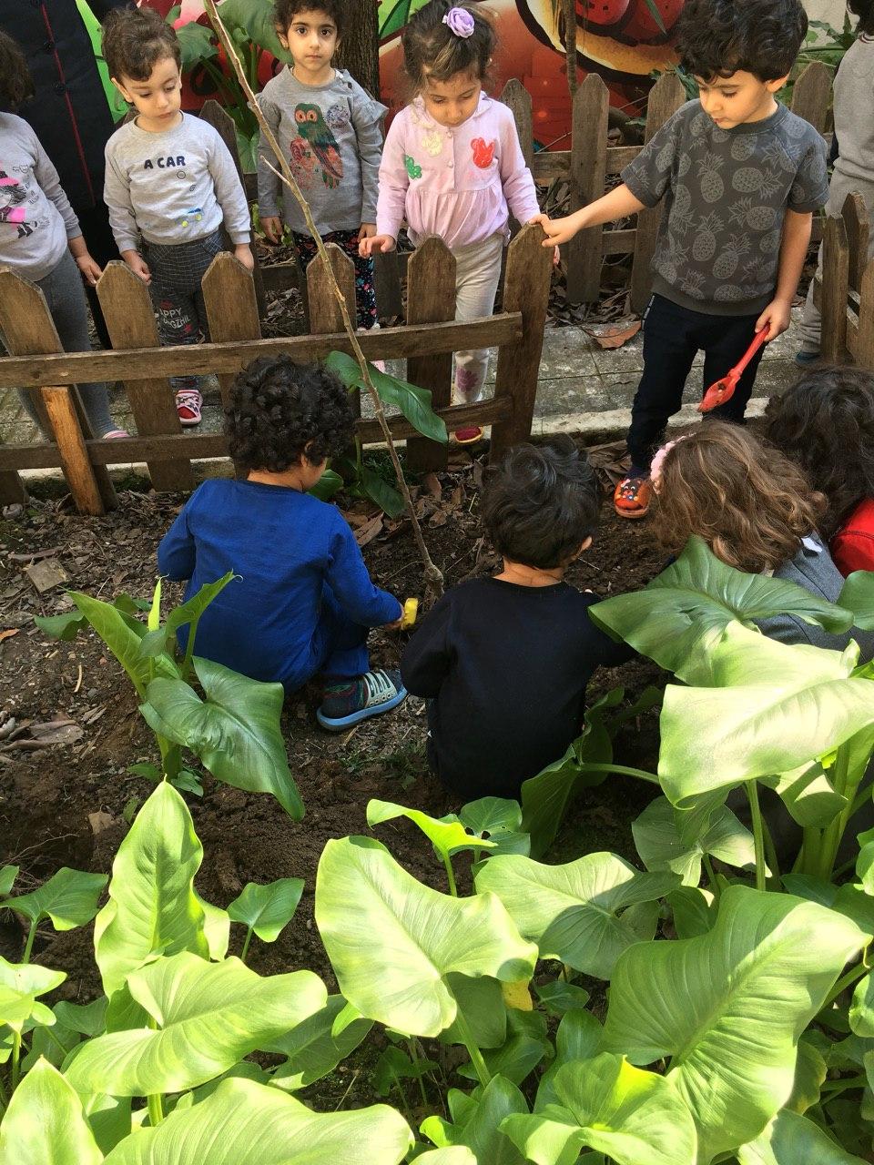 کاشت نهال توسط کودکان مهدکودک کندوی عسل عضو فعال کارگروه کودک ، نوجوان انجمن بوم بانان گیل و دیلم