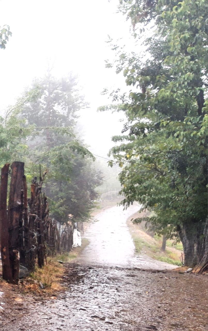 منطقه ییلاقی سوتگوابر شهرستان  سیاهکل