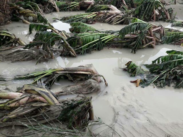 آخرین وضعیت سیلاب سیستان و بلوچستان بروز رسانی میشود؛ آب پرحجم پشت سدها و بندسارها در وضعیت هشدار است