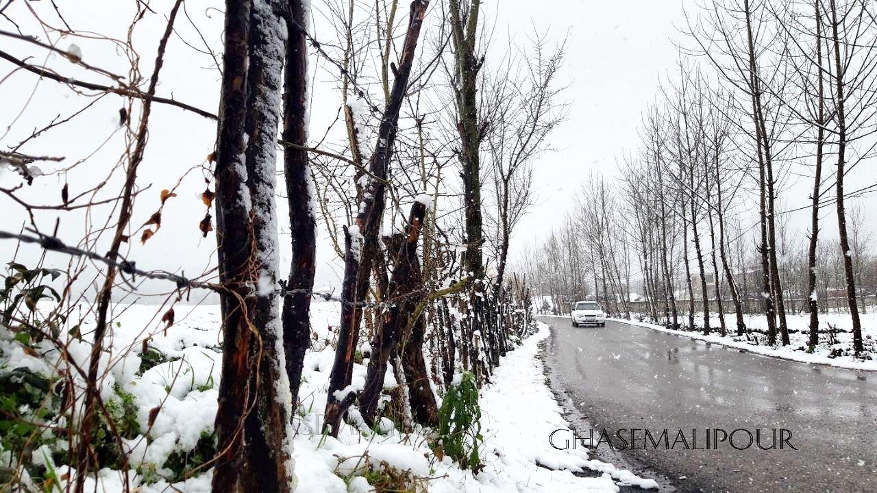 گزارش تصویری اولین روز برفی شهرستان لاهیجان 📷قاسم علیپور