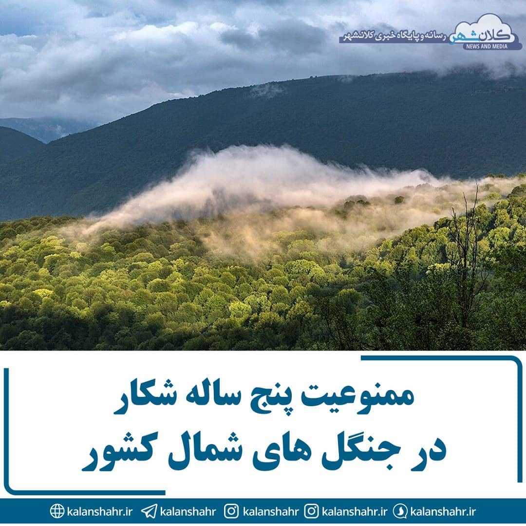 اداره کل محیط زیست مازندران اعلام کرد شکار و تیراندازی در جنگل های شمال به مدت ۵ سال ممنوع شد.
